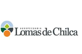 lomas_chilca